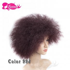 Cheap Short Afro Kinky Curly Wigs For Black Women Perruque Synthetic Women Resistan