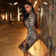 Animal Print and Fishnet Mini Dress