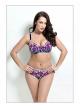 2017 plus size bikini set Bathing Suit Push up bikinis women Large Cup Bikini set