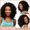 1PC Afro Kinky Curly Wig Short Curly Wigs For African American Black Women Wig