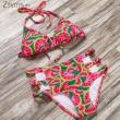 ZTVitality 2017 Bandage Push Up Bikini Set Brazilian Biquini Watermelon Printed