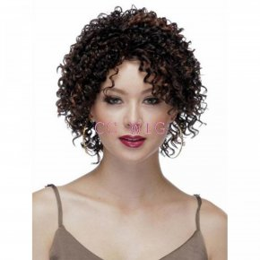 Short Afro Curly Wigs High Quality Wigs For Black Women Short Kinky Curly Brown