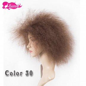 Cheap Afro Kinky Synthetic Lace Front Wig African American Short Wigs For Black