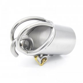 Stainless Steel PA Puncture Chastity Device Cock Cage Penis Lock Cock Ring Chastit